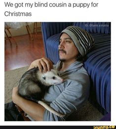 OMG I would love if I got an opossum for Christmas! For being the land mammal with the most teeth, they are super amazing!