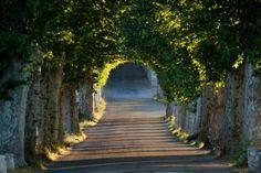 Gourmet_Tour_Provence_www.spice-frenchriviera.com #SPICE #Lifestyle #Concierge #FrenchRiviera #CotedAzur