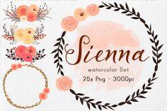 Watercolor Flowers & Elements by Lizamperini on @creativemarket