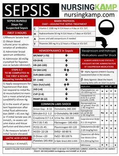 Medical surgical nursing - Sepsis What nurses need to know Sepsis Assessment Cheat Sheet – Medical surgical nursing Medical Surgical Nursing, Cardiac Nursing, Med Surg Nursing, Oncology Nursing, Nursing Assessment, Pharmacology Nursing, Pathophysiology Nursing, Nursing School Notes, Nursing Schools