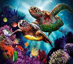 Shop our best value Cross Stitch Turtle on AliExpress. Check out more Cross Stitch Turtle items in Home & Garden, Men's Clothing! And don't miss out on limited deals on Cross Stitch Turtle! Sea Turtle Art, Sea Turtles, Sea Turtle Painting, Baby Turtles, Turtle Swimming, Paint By Number Kits, Ocean Creatures, Diamond Art, Diamond Cross