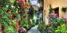 Beautiful Italy Streets | ... » Experience The Beautiful Ancient Town Streets of Spello, Italy