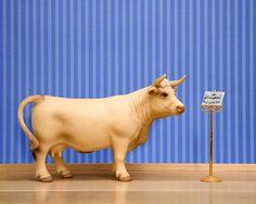 cow art farmhouse decor music room musician by WildLifePrints, $20.00