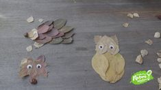 Create your own forest friends out of autumn leaves! This fun nature craft is a great way to help kids learn about wildlife. Like this activity? Animal Activities For Kids, Leaf Animals, Leaf Crafts, Forest Friends, Arts Ed, Nature Crafts, Amazing Adventures, Autumn Leaves, Kids Learning