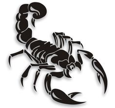 Car-Styling Personality Cover Scratches Before And After Bumper Scorpion Stickers Car Accessories – Car ID Best Deal Tribal Tattoos, Body Art Tattoos, Tatoos, Tattoo Sketches, Tattoo Drawings, Tatoo Musical, Escorpion Tattoo, Petit Tattoo, Hand Embroidery Kits