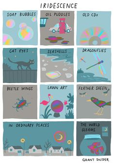 Words and Pictures by Grant Snider Life Comics, Writing Inspiration, Cute Art, Art Inspo, Illustration Art, Doodles, Artsy, Sketches, Cartoon