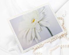 Herbera daisy winter snow white blank note card. Great for any occasion.    #note #card #any_occasion #white #greeting #gift