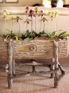 faux-bois planter indoors