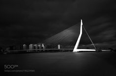 Erasmus Bridge by mk11 #architecture #building #architexture #city #buildings #skyscraper #urban #design #minimal #cities #town #street #art #arts #architecturelovers #abstract #photooftheday #amazing #picoftheday