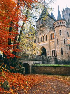 A day trip to Marienburg Castle