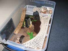 DIY Hermit Crab Habitat. I think I might get one...