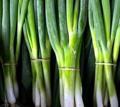 Farmers Market, Ontario, Organic, Vegetables, Vegetable Recipes, Veggies