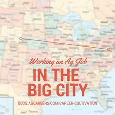 AG JOB IN THE BIG CITY
