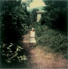 tarkovsky polaroids and meredith monk's music Cute Wallpaper Backgrounds, Cute Wallpapers, Polaroid Photos, Polaroids, My Heart Is Heavy, Dreamy Photography, Luz Natural, Cinematography, Beautiful World