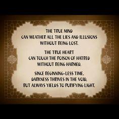 Lion turtle wisdom