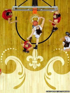 Basketball Open Gym Near Me Info: 2002178663 Free Basketball, Basketball Finals, Basketball History, Basketball Shooting, Best Basketball Shoes, Basketball Drills, Basketball Uniforms, Basketball Court, Girls Basketball