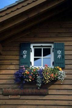 Um verdadeiro canteiro de flores sob esta janela decorada.