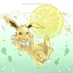 Jolteon Chestnut in tumblr_o57fisExNC1rvs7gdo3_1280.jpg (800×800) from gourgeist.tumblr.com