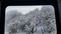 ventana al paisaje magico Ushuaia invierno #nieve #snow #southamerica