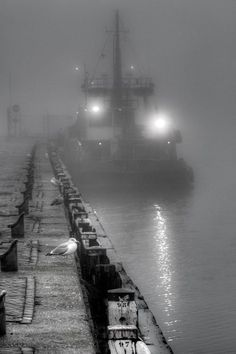 Mist / Black and White Photography by Ton Heijnen Black N White, Black And White Pictures, Fotografia Pb, Photo D Art, All Nature, Light And Shadow, Yin Yang, Great Photos, Black And White Photography