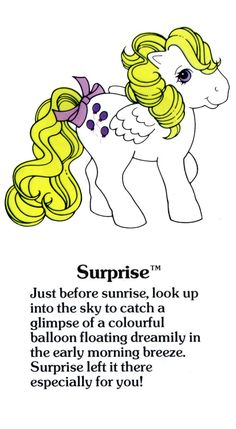 I love G1 My little Pony. And Surprise / Haschmich is my favourite....want this as a Plush or bag so hard... ...