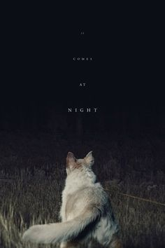 Watch It Comes at Night Full Movie HD Free | Download  Free Movie | Stream It Comes at Night Full Movie HD Free | It Comes at Night Full Online Movie HD | Watch Free Full Movies Online HD  | It Comes at Night Full HD Movie Free Online  | #ItComesatNight #FullMovie #movie #film It Comes at Night  Full Movie HD Free - It Comes at Night Full Movie