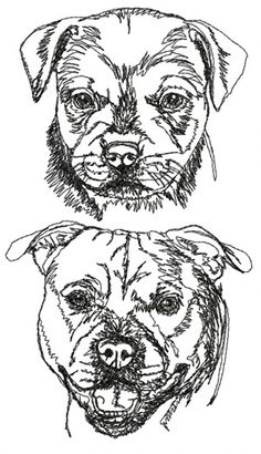Advanced Embroidery Designs - English Staffordshire Bull Terrier