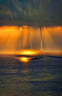 Nature - Weather - Waterspouts over the ocean at sunset. All Nature, Science And Nature, Amazing Nature, Amazing Art, Beautiful Sunset, Beautiful World, Wild Weather, Natural Phenomena, Natural Disasters