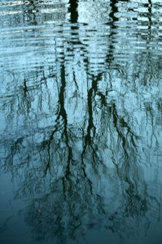 Distortion/Reflection in water #2. Taken 11/01/14.