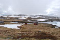 Hardangervidda - Norway
