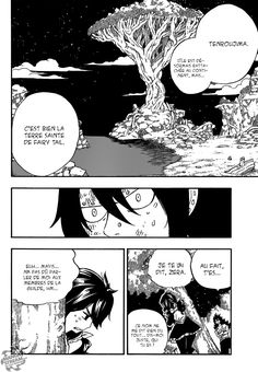 Scan Fairy Tail 491 VF page 4