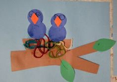 Animal Habitats bird nest