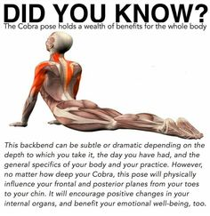 Cobra Pose Benefits Yoga