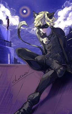 Chat Noir enjoying the night (Miraculous Ladybug)