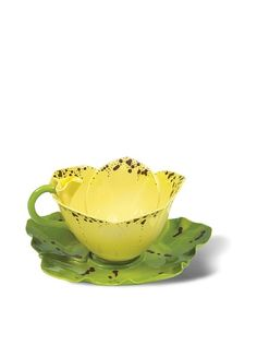 Mustardseed and Moonshine Orchid Tea Cup Orchid Shamrock, Yellow at MYHABIT