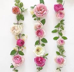 @bea7507 🌸Instagram #flatlays #flowers