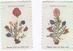 Blomsterkort från Jerusalem