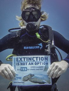Sharks and Rays Blue Marlin, Manta Ray, Sharks, Small Groups, Gili Trawangan, March 2013, Projects, Action, Sign
