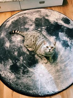 I found this amazing Planet Moon Earth Venus Pattern Carpet Round Soft Fashion Floor Mat with AU$10.99,and 14 days return or refund guarantee protect to us. --Newchic Home Carpet, Make Money Now, Patterned Carpet, Fashion Room, Bay Window, Floor Rugs, Fabric Material, Clothes For Sale, Venus