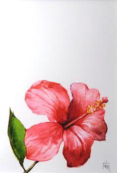 Hibiskus,  Aquarell, original, nicht gedruckt by ManamiTakamatsu on Etsy