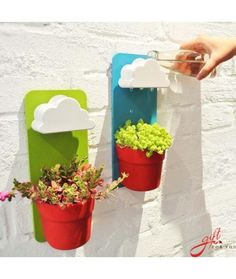 Bring life into your home as you make gardening fun again with the rain cloud watering pot. The pots can be placed either on the wall or table and feature a clever design that allows the plant to get watered by a tiny rain cloud above. Container Design, Garden Container, Asian Home Decor, Easy Home Decor, Creative Inventions, Deco Nature, Flower Pots, Flowers, Flower Planters