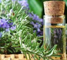óleo-essencial-de-alecrim