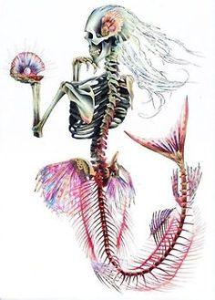 Esquelet de sirena.