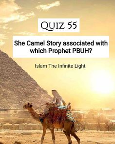 Islamic quiz to increase your knowledge on prophets (Peace be upon them) - Quiz Question : She camel story associated with which Prophet (PBUH)? Quiz With Answers, Quiz Questions And Answers, This Or That Questions, General Knowledge Test, Islamic Pictures, Quizzes, Ramadan, Quran, Allah
