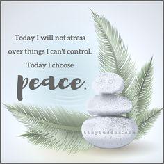 Today I Choose Peace - Tiny Buddha