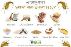 alternatives to wheat and wheat flour