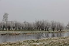 Allochtonka - życie ekspatki w Holandii: Zimowy polder