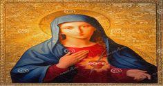 Perché si festeggia l'Immacolata Concezione? L'Immacolata Concezione si ricorda ogni anno l'8 dicembre. Fu proclamata da papa Pio IX...