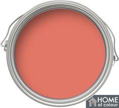 Homebase Home of Colour: Garden Colour