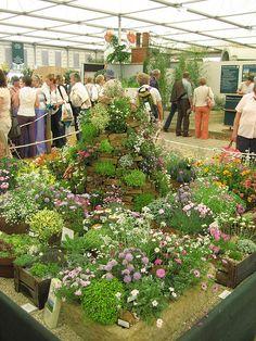 Chelsea Flower Show 2007 by AGA~mum, via Flickr